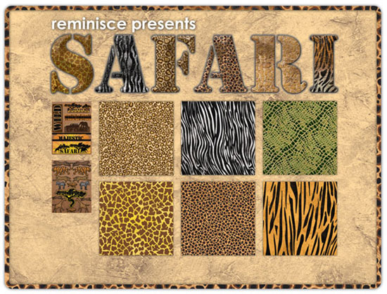 Safari-Product-Shot