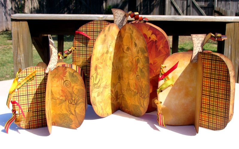 HAR Pumpkins TS