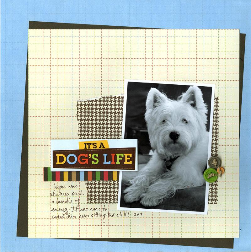 DOG LO AP200